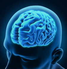 e-vitamin komplex idegrendszer vedelem kapszula