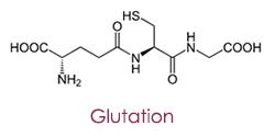 glutation molekula
